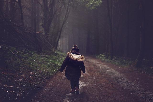Wspólne podróżowanie z czworonogiem
